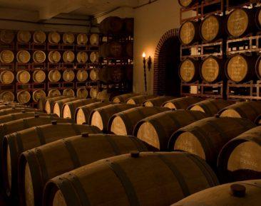 Artigo de professores da UCPel analisa posicionamento das vinícolas brasileiras