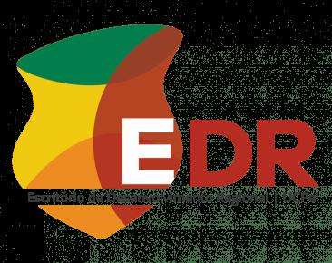 Internacionalização, intercâmbio e Idiomas são temas de live do EDR na terça-feira (18)